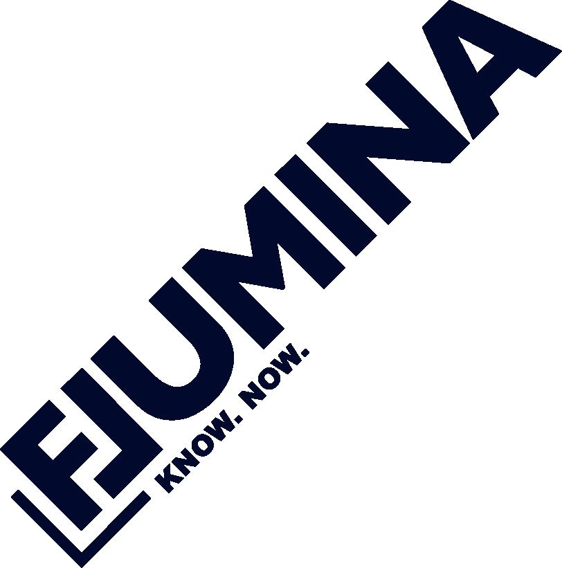 fLUMINA GmbH